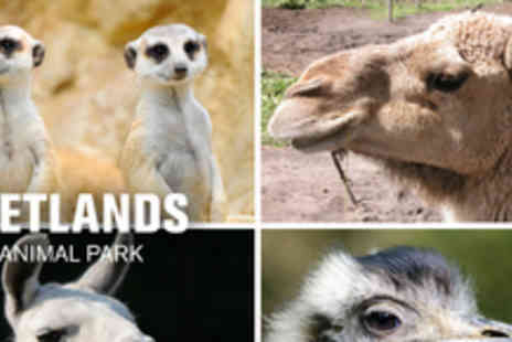 Wetlands Animal Park - Day long zookeeping experience - Save 52%
