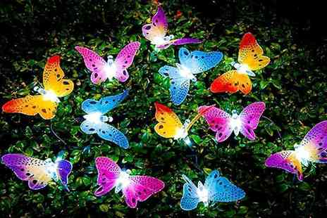 Urshu - Set of 12 butterfly garden solar lights - Save 77%