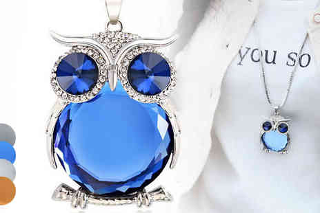 Darcy Eleanor - Crystal Owl Long Chain Necklace  Available in Four Colours - Save 36%