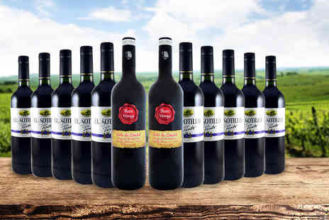 Premium Rioja - 12 bottle hamper of Spanish red wines - Save 64%