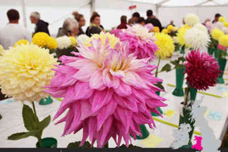 SuperBreak - Hotel Stay PLus RHS Cardiff Flower Show Tickets - Save 0%