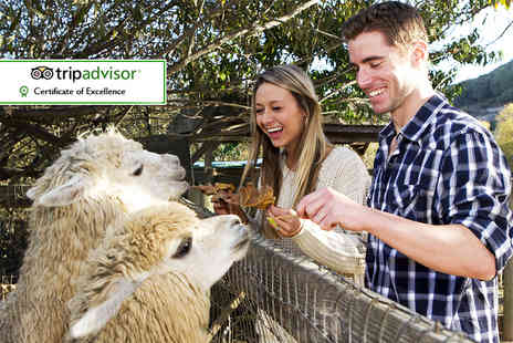 The Llamas Pyjamas - Overnight Cumbria break for two including an animal encounter and breakfast - Save 0%
