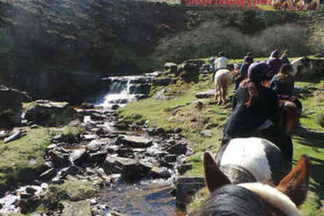 Grange Trekking - Horse Riding Lesson or One Hour Demonstration Trek - Save 56%