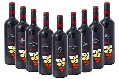 Monte Regio - Nine Bottles of Sanitago Way Spanish Red Wine  With Free Delivery - Save 61%