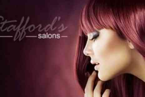 Staffords Salons - Half Head Highlights or Full Head Colour With Restyle and Conditioning Treatment - Save 68%