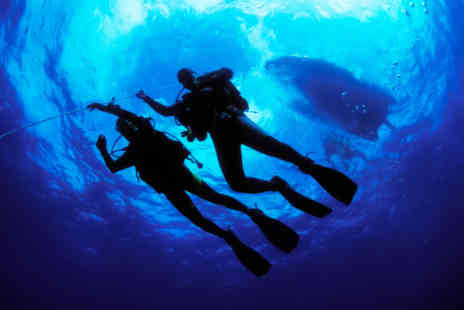 BUEC Scuba - One hour introduction to PADI scuba diving  - Save 55%