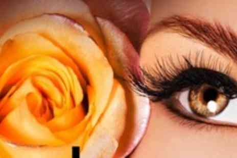 Prima Donna - Three Treatments From Choice of Spray Tan, Party Lashes and Eyebrow Thread, Wax and Tint - Save 57%