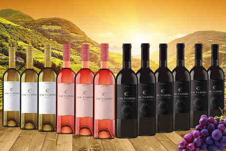 Gourmentum - 12 bottle mixed case of award winning Spanish wine sip red, white and rose - Save 0%