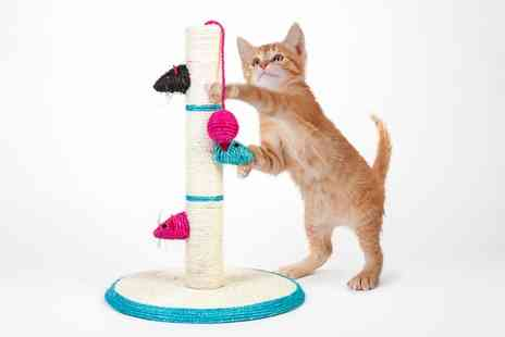 Groupon Goods Global GmbH - Cat Scratching Pole With Play Toys - Save 0%
