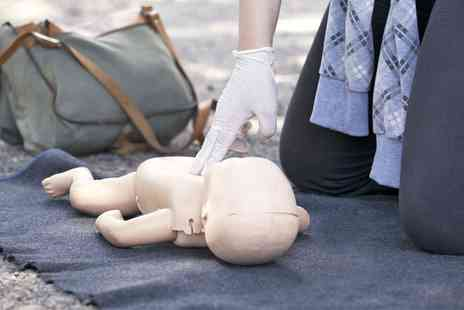 Pulse Medic Services - Two Day Paediatric First Aid Course for One or Two - Save 0%