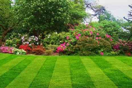 Lovely Lawns - Lawn Treatment or Lawn Gold Package - Save 0%