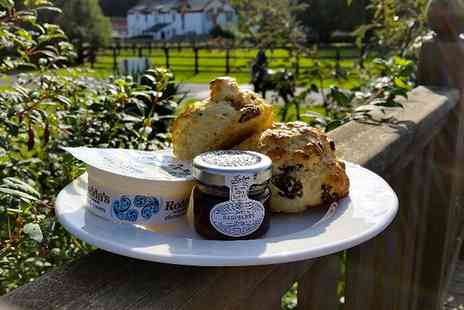 The National Stud - Cream Tea for Two or Four - Save 46%