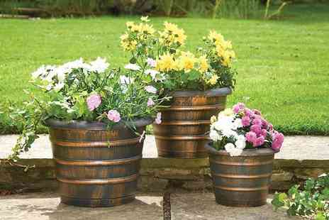 Gablemere - Pack of 3 Beehive Planters - Save 0%