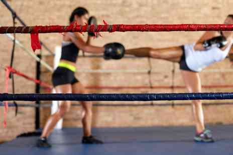 Springhealth Kickboxing and Tabata - Kickboxing or Tabata Classes, Kickboxing Personal Training Sessions or Six Week Course  - Save 63%
