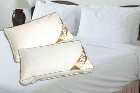 E4Emporium - Goose feather and down box pillow - Save 67%
