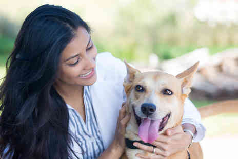Soft Skills Courses - Online accredited veterinary nutrition course - Save 92%