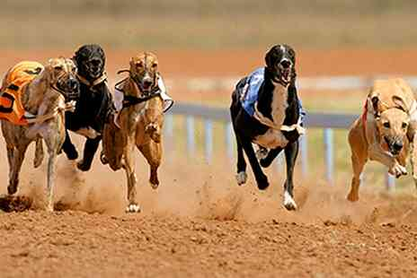 Henlow Racing - Greyhound Racing Night with Meal, Drink and Racecard for Up to Six - Save 65%