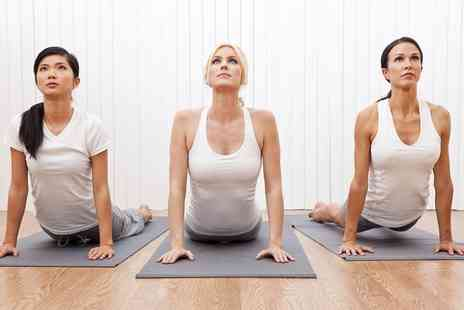 Yoga Ananda Holistic Centre - Six Yoga Classes for One or Two People - Save 74%