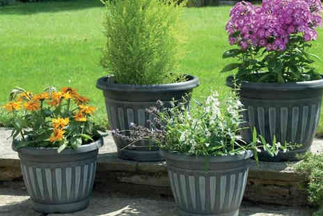 Gablemere - Four Georgian Style Planters Two Colours - Save 0%