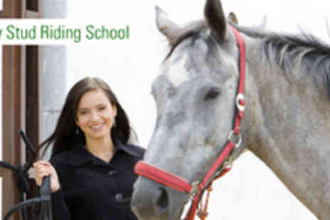 Godley Stud Riding School - 1 Hour Semi Private Horse Riding Lesson - Save 52%