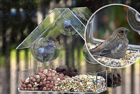 Hungry Bazaar - Glass Window Bird Feeder - Save 61%