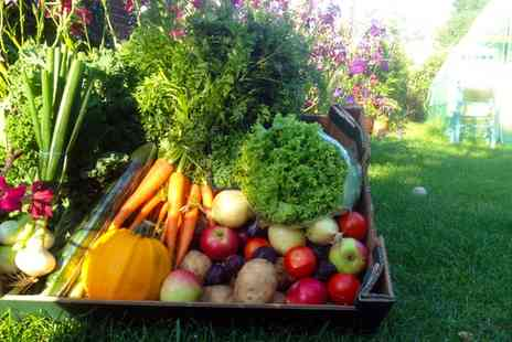 Fresh Fields Farm Boxes - One or Three Boxes of Mixed Fruit and Vegetables - Save 50%