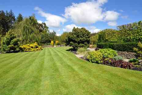 Greensleeves - Lawn Treatment for Up to 400 Square Metres - Save 58%