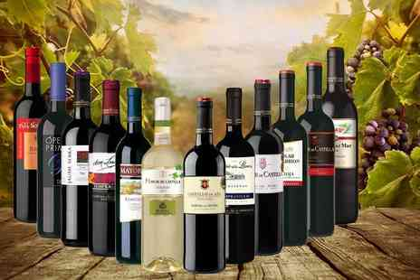 Gourmentum - Tasting selection of 12 bottles of Spanish wine - Save 57%