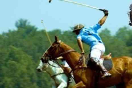 JF Polo Academy - Two hour polo lesson for one - Save 80%