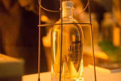 Gin Foundry - Ticket to Junipalooza Gin Festival, Tobacco Quay, 12 June - Save 51%