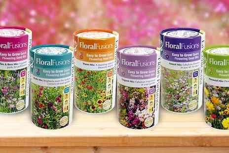 Suttons Seeds - Floral Fusion Shake n Sow in 3 or 6 Pack - Save 44%