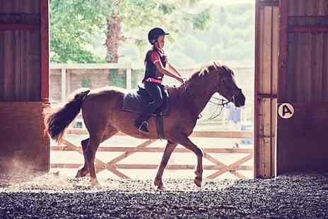 Kathbern Stables - Pony Care and Riding Experience For One or Two Children - Save 0%