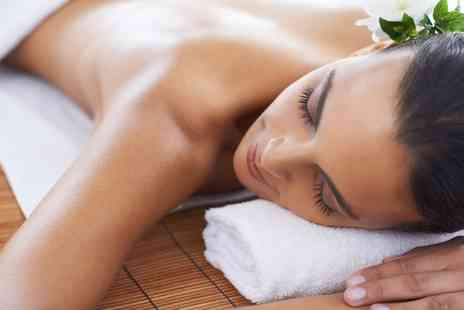 Salus Wellness Clinics - Choice of One Hour Massage - Save 0%