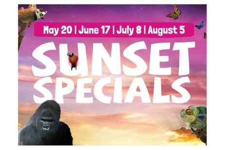 Bristol Zoo - Sunset Special at Bristol Zoo, 17 June, 8 July, 5 August - Save 50%