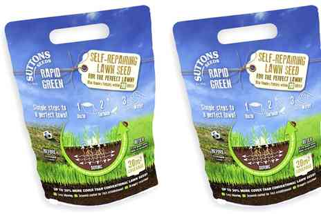 Suttons Seeds - Two Packs of Self Repairing Lawn Seed Free Delivery - Save 35%