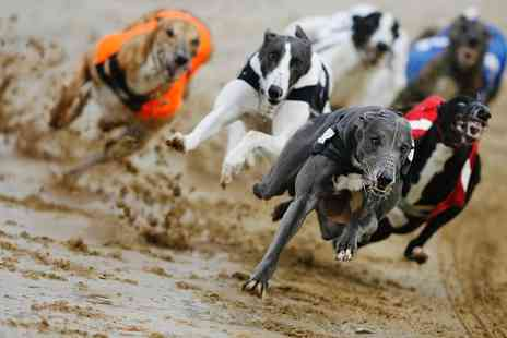 Love The Dogs - Greyhound Racing Entry with Refreshments for Two, Saturdays - Save 74%