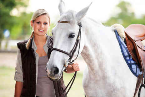 Aldersbrook Riding School - One hour adult horse riding lesson - Save 53%