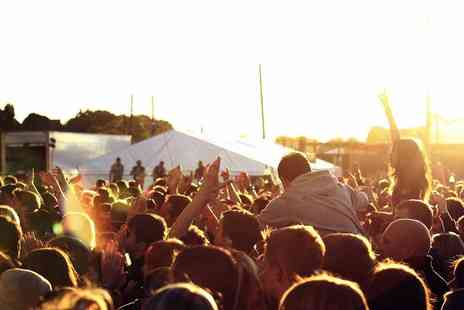 Forever Invasion - Friday or Saturday or weekend ticket to Shrewsbury Fields Forever Festival - Save 46%