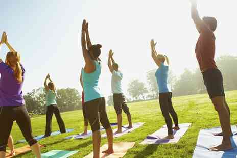 Pure Vitality Yoga - One or Two Day Pass to Festival of Yoga, Health and Well Being 13 and 14 August - Save 38%