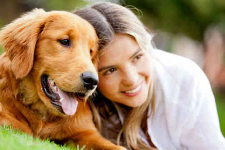 Aztec Events - One day entry to the All About Dogs show for two - Save 50%