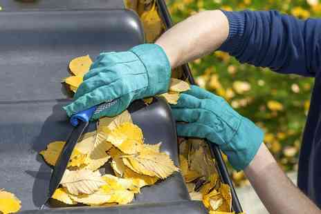 Professional Cleaning - Gutter Cleaning - Save 42%