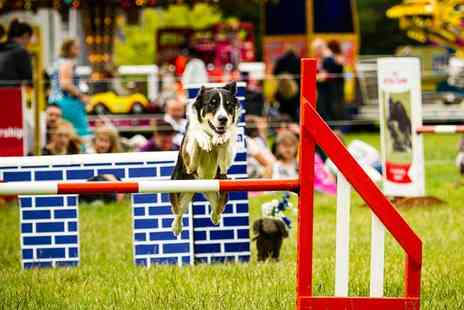 The Pet Show - The Pet Show Day Ticket for a Child, Adult, Two Adults or Family 23  to 24 July - Save 17%