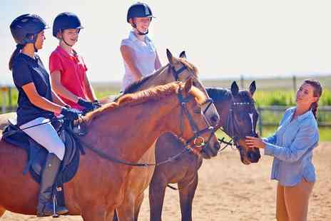 Barnston Livery and Riding Centre - Horse Riding Lesson for One or Two Kids or Adults - Save 47%