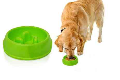 Bunty Pet Products - Small or medium slow pet feeder - Save 64%