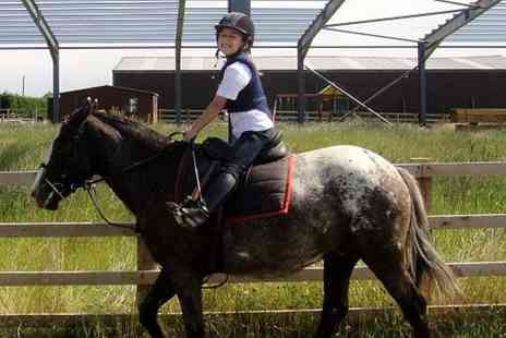 Mill House Riding Centre - 30 minute pony riding lesson for ages 3 to 6 with a soft drink  - Save 40%
