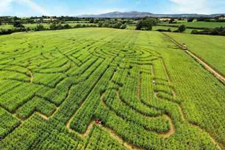 The Great Worcester Maize Maze - Entry for 2 to The Great Worcester Maize Maze - Save 46%