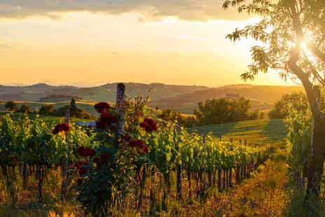 Buyagift - Vineyard and winery tour for two - Save 0%