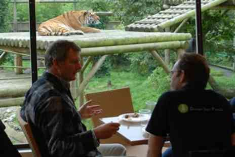 Paradise Wildlife Park - Afternoon Tea with the Tigers for One - Save 0%