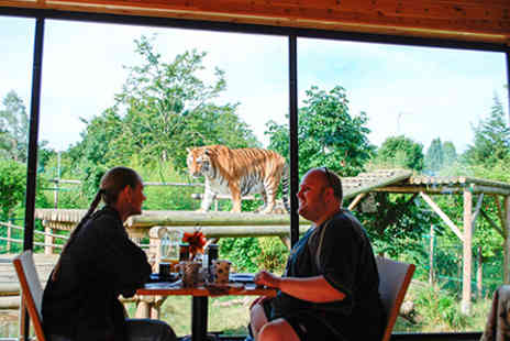 Paradise Wildlife Park - Breakfast with the Big Cats for Two - Save 0%