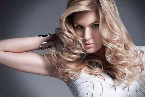 Alan Lawrence Salon - Cut and Blow Dry - Save 44%